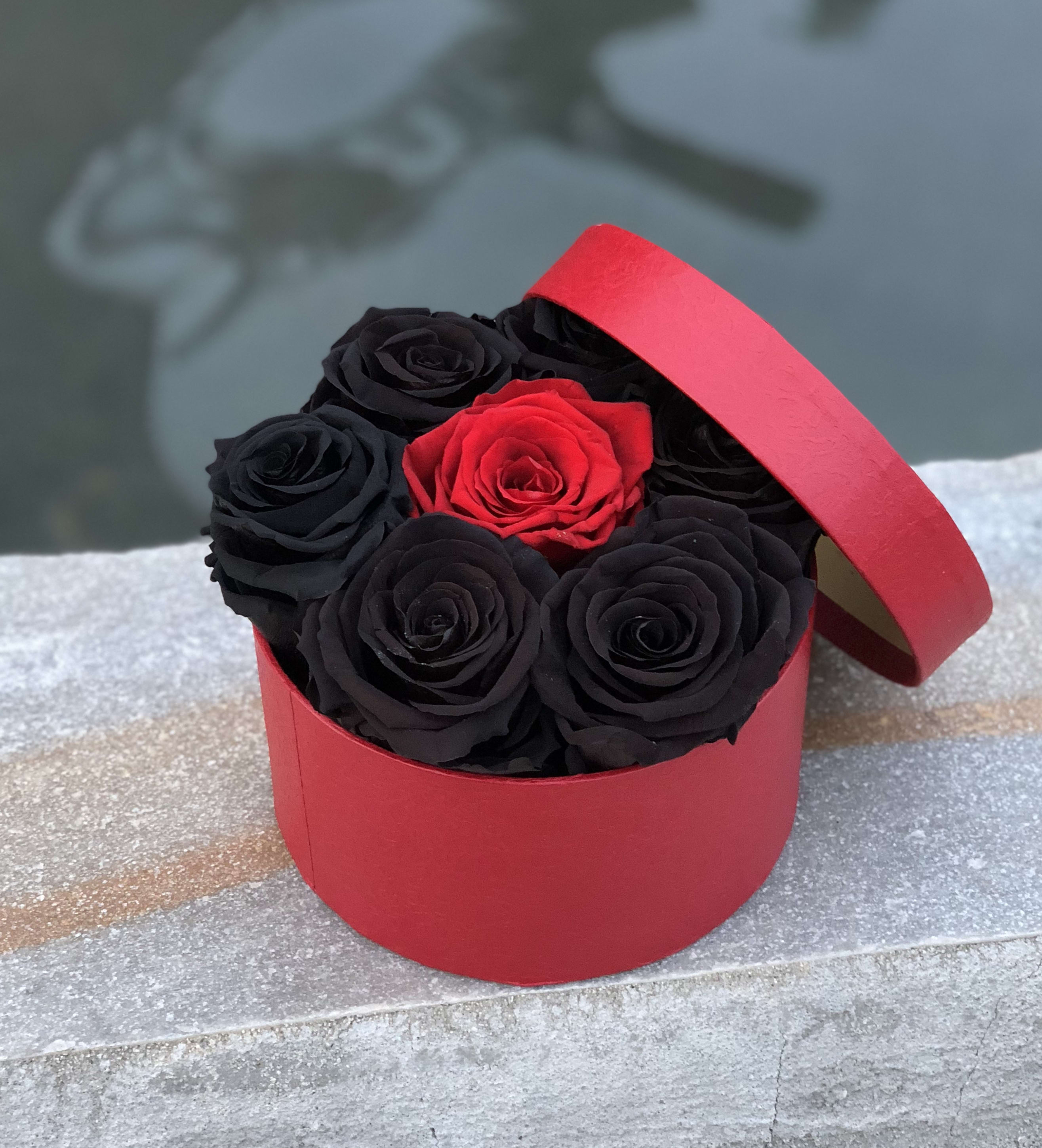 Black And Red >> Everlasting Roses Black And Red 6 7 Roses In Torrance Ca Andes Florist
