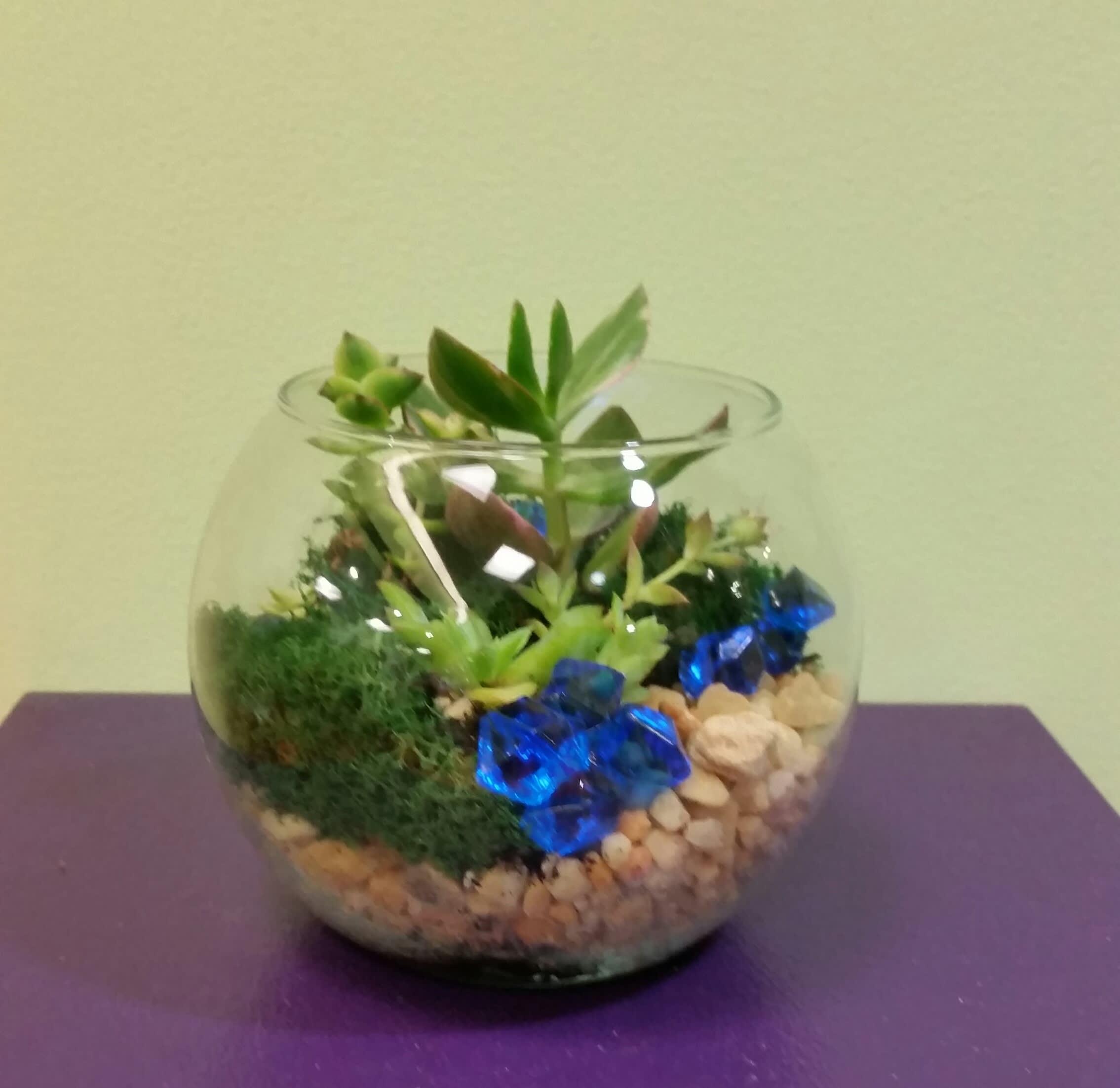 Fishbowl Terrarium In Philadelphia Pa Philadelphia Flower Market