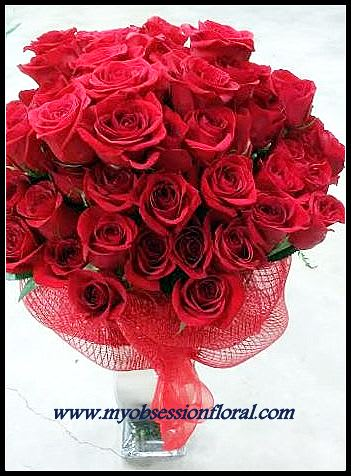 Romantic Red Rose For My Love