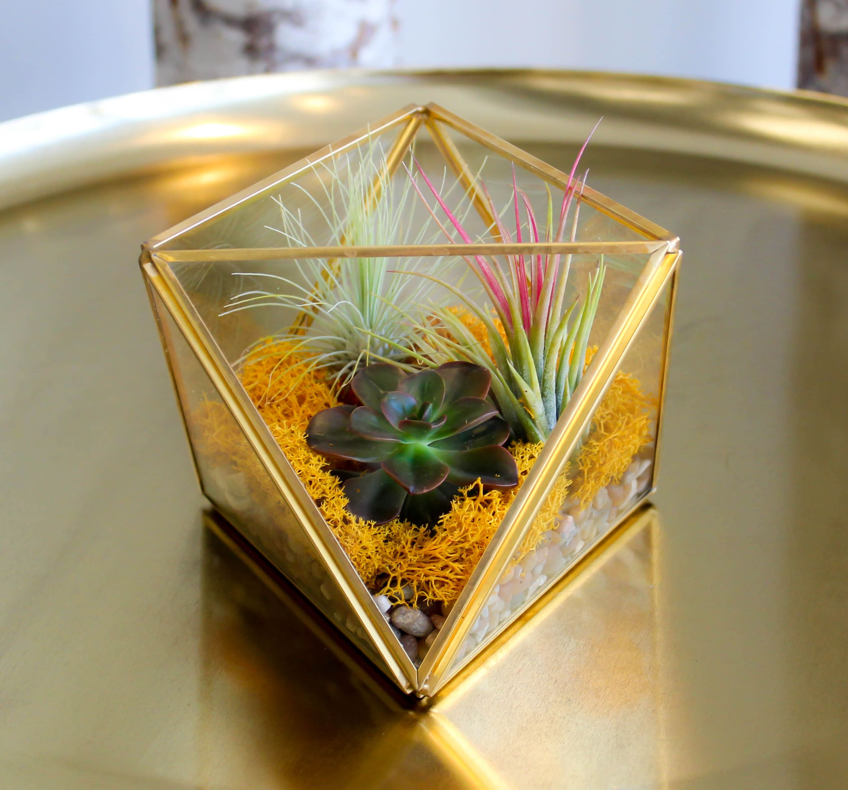 Gold Terrarium In Los Angeles Ca Sonny Alexander Flowers