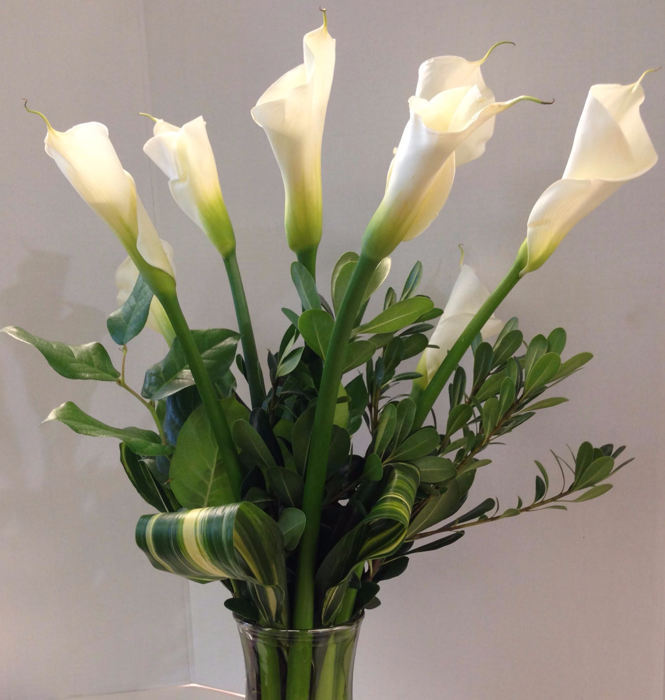 Calla Lilies Arrangement Call Ahead By Blooms At The Hills Florist