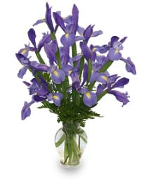 Ramo De Lirios Azules Arreglo Floral In Wilmington Ma Designs By Don