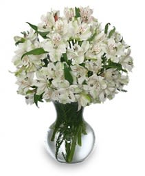 Fleecy White Flower Arrangement In Wilmington Ma Designs By Don