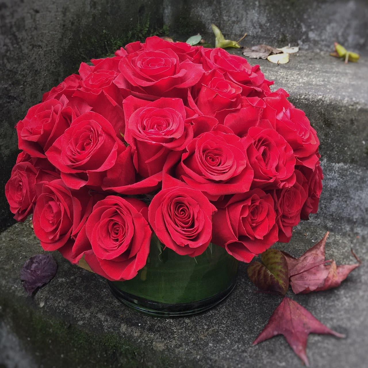 Classic Red Roses in Seattle, WA | Fiori Floral Design