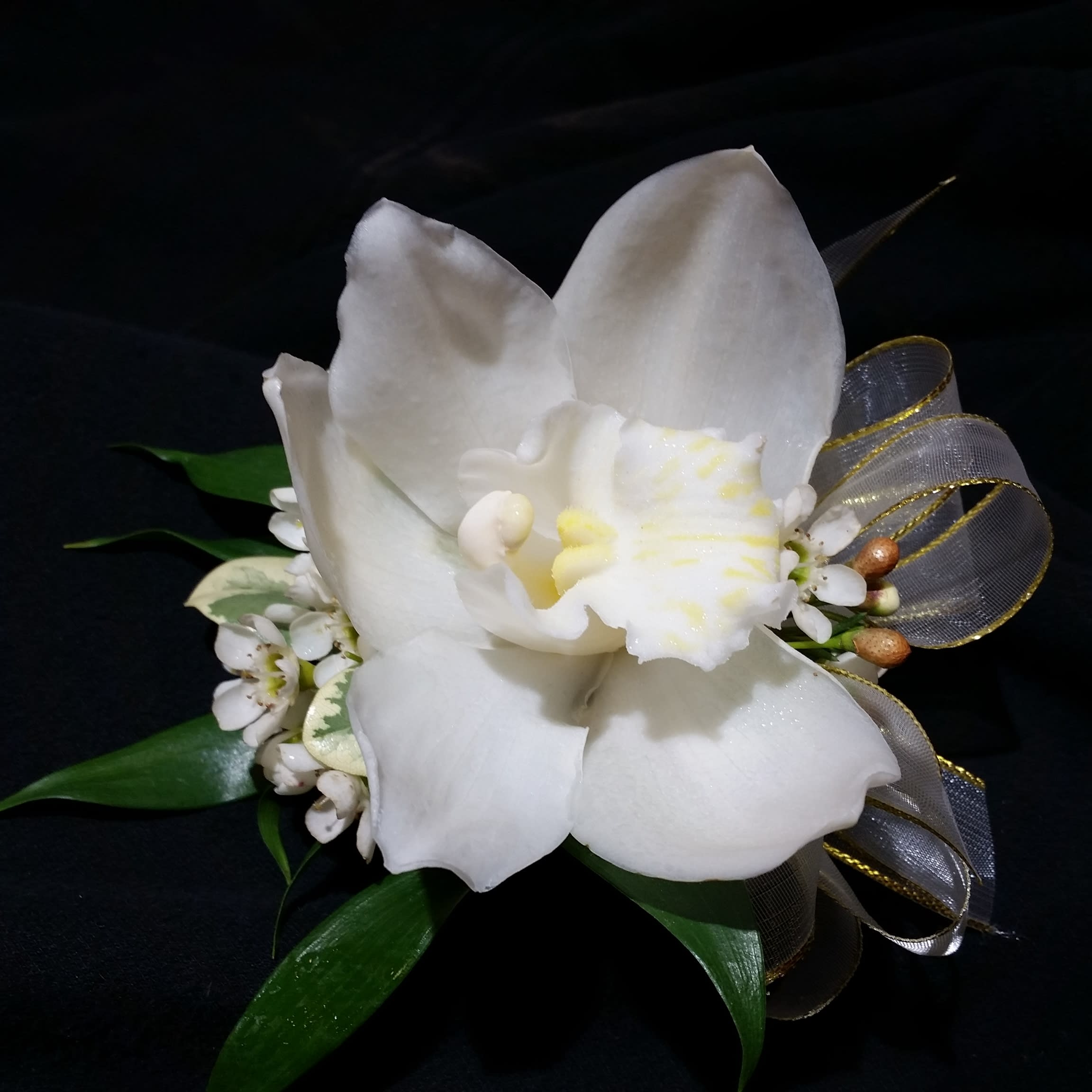 Perfect White Orchid Wrist Corsage in Newton, MA | The ...