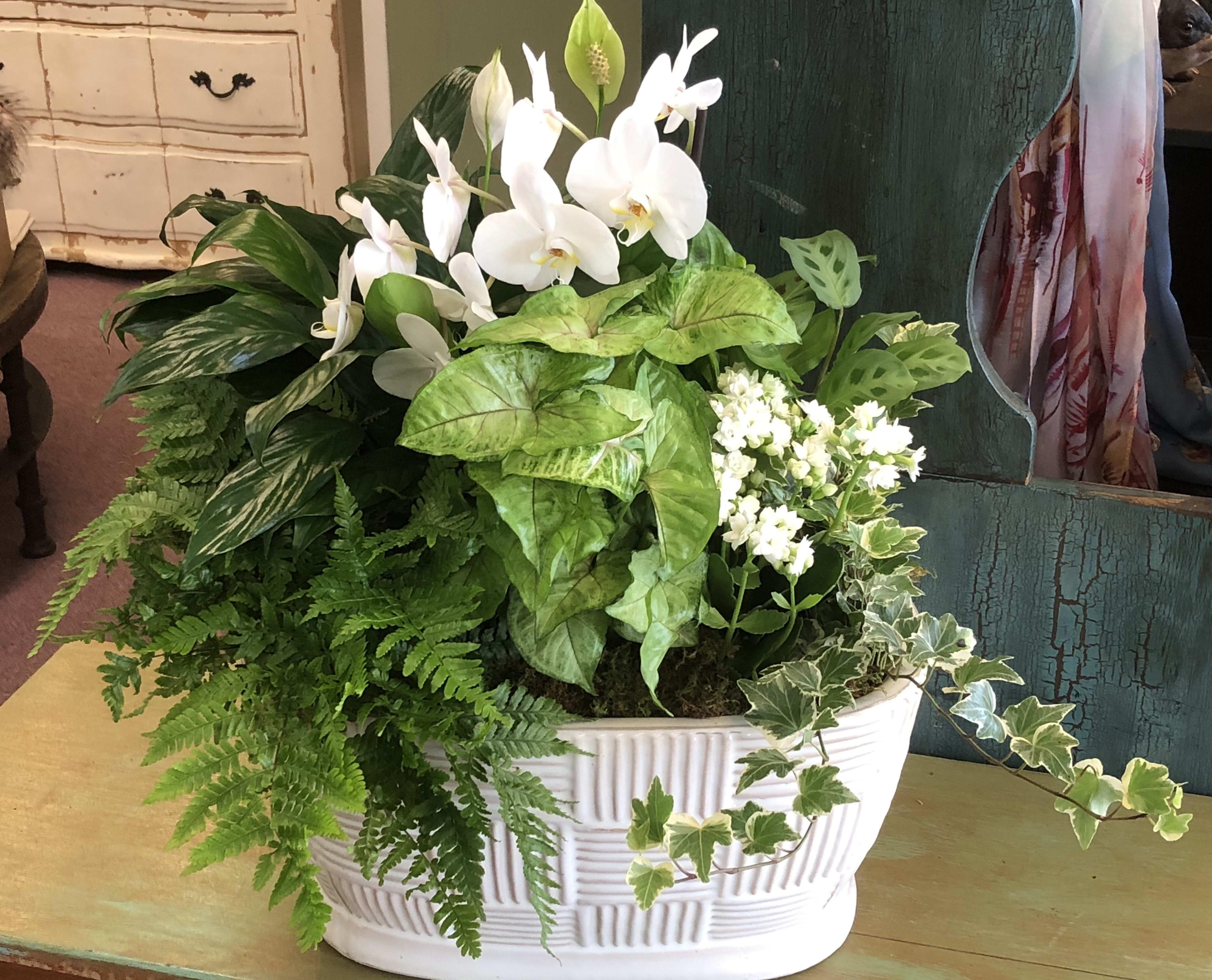 Carmel Flower Shop