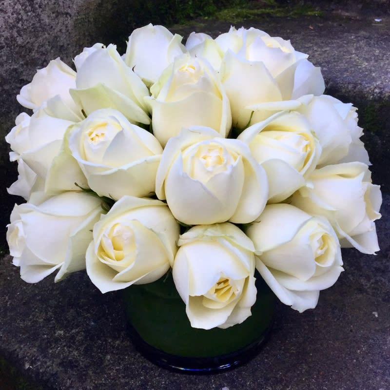 Classic White Roses in Seattle, WA | Fiori Floral Design