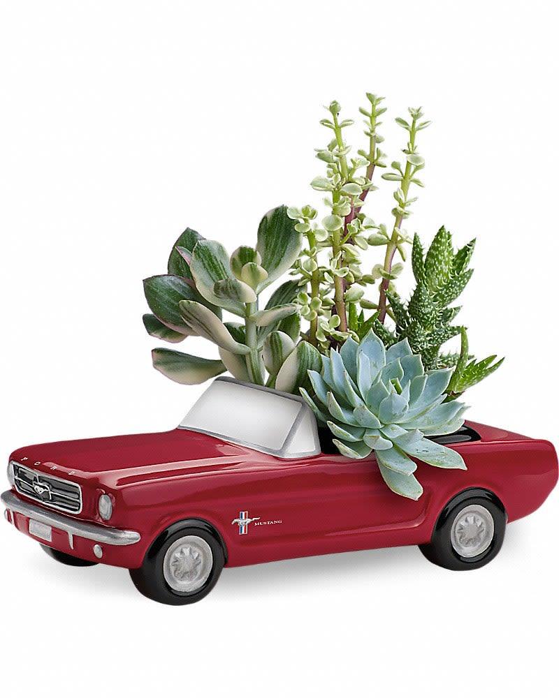 Dream wheels 65 ford mustang by teleflora in mount carroll il flower fan a see