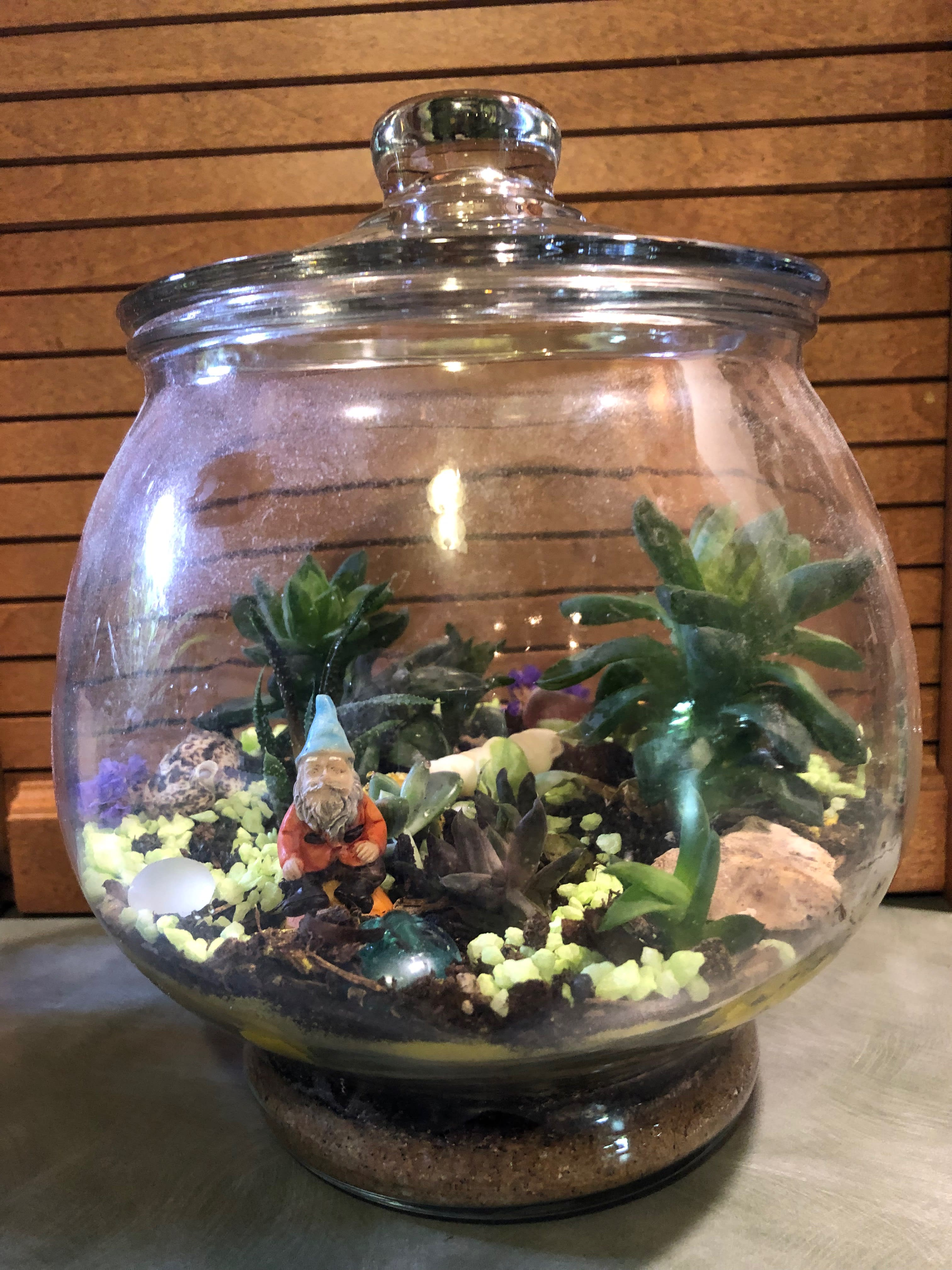 Gnome Garden in Greenfield, WI | Kathy's 2nd Chance Plants, LLC