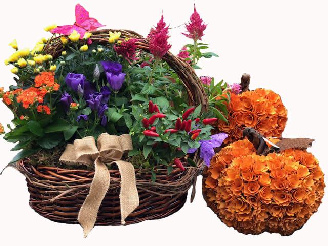 Autumn Flowering Plant Basket In Glen Head Ny Glen Head