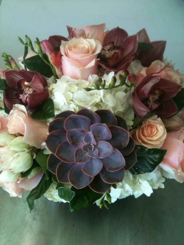 Succulent Arrangement By Seti Flowers