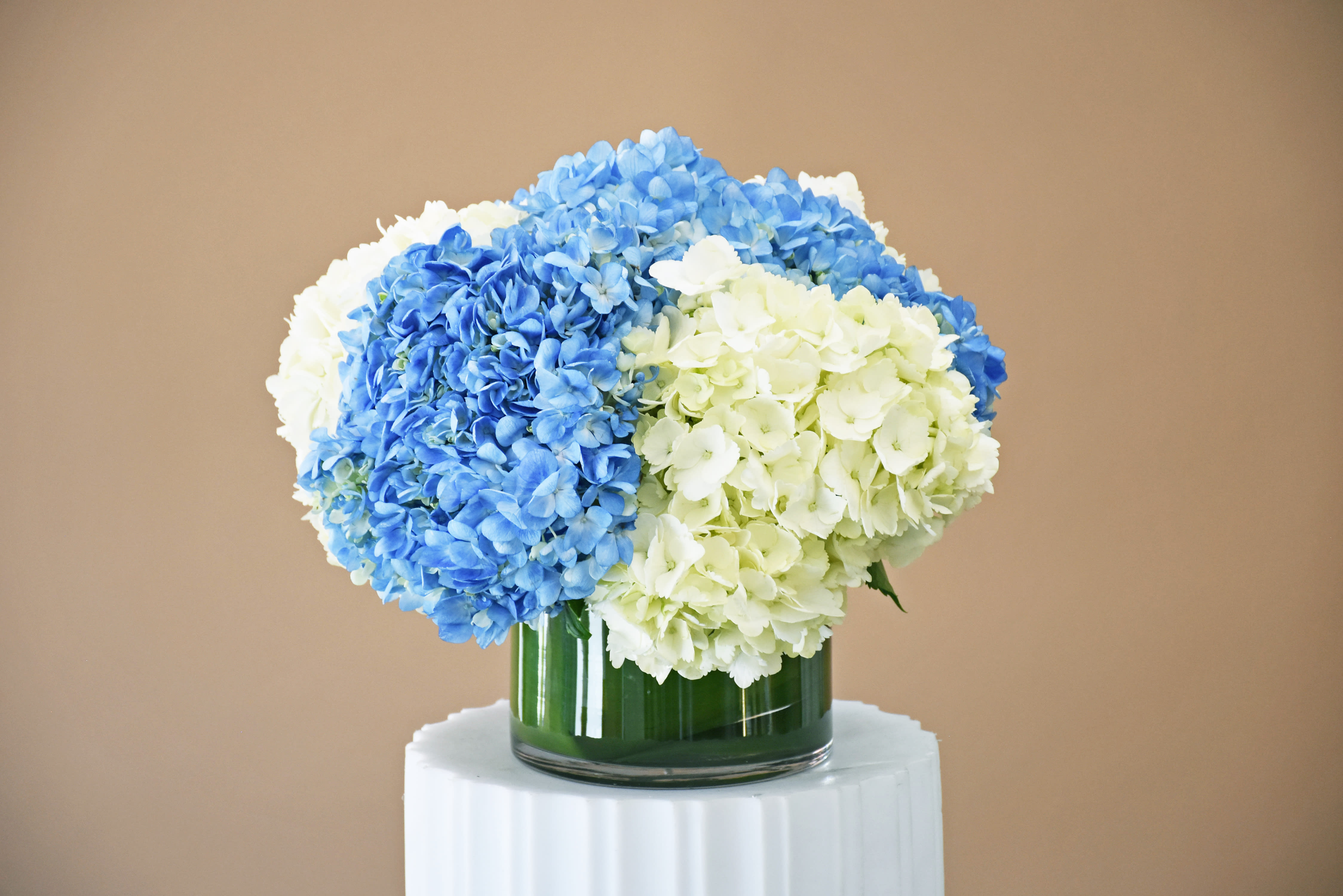 White And Blue Hydrangea W467 By Fillmore Florist San Francisco