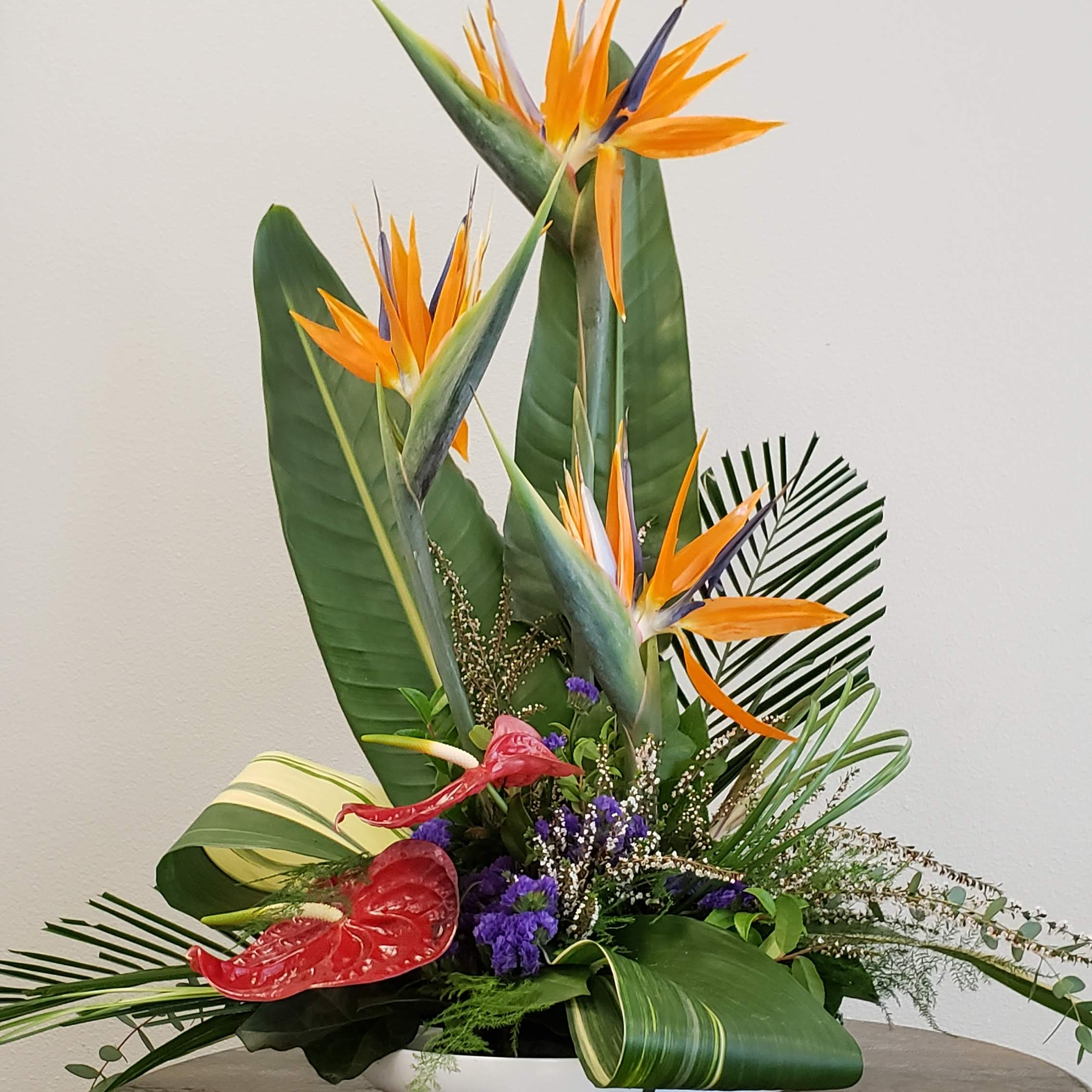 Tropical Day Flower Arrangement In Olympia Wa Specialty Floral
