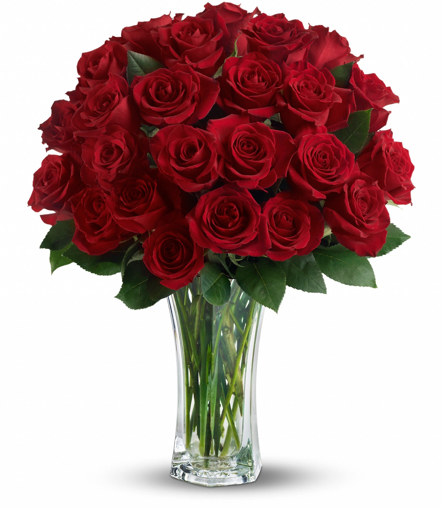 Love And Devotion Long Stemmed Red Roses In Beulah Nd Bloom N
