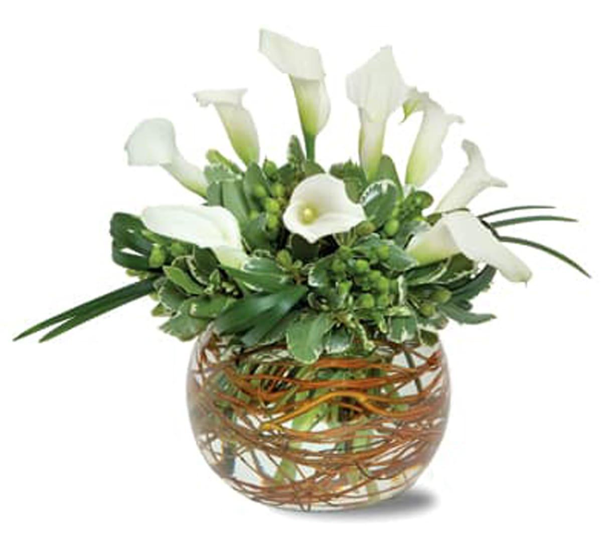 Mini Calla Lily Bubble Arrangement In San Jose Ca Valley Florist
