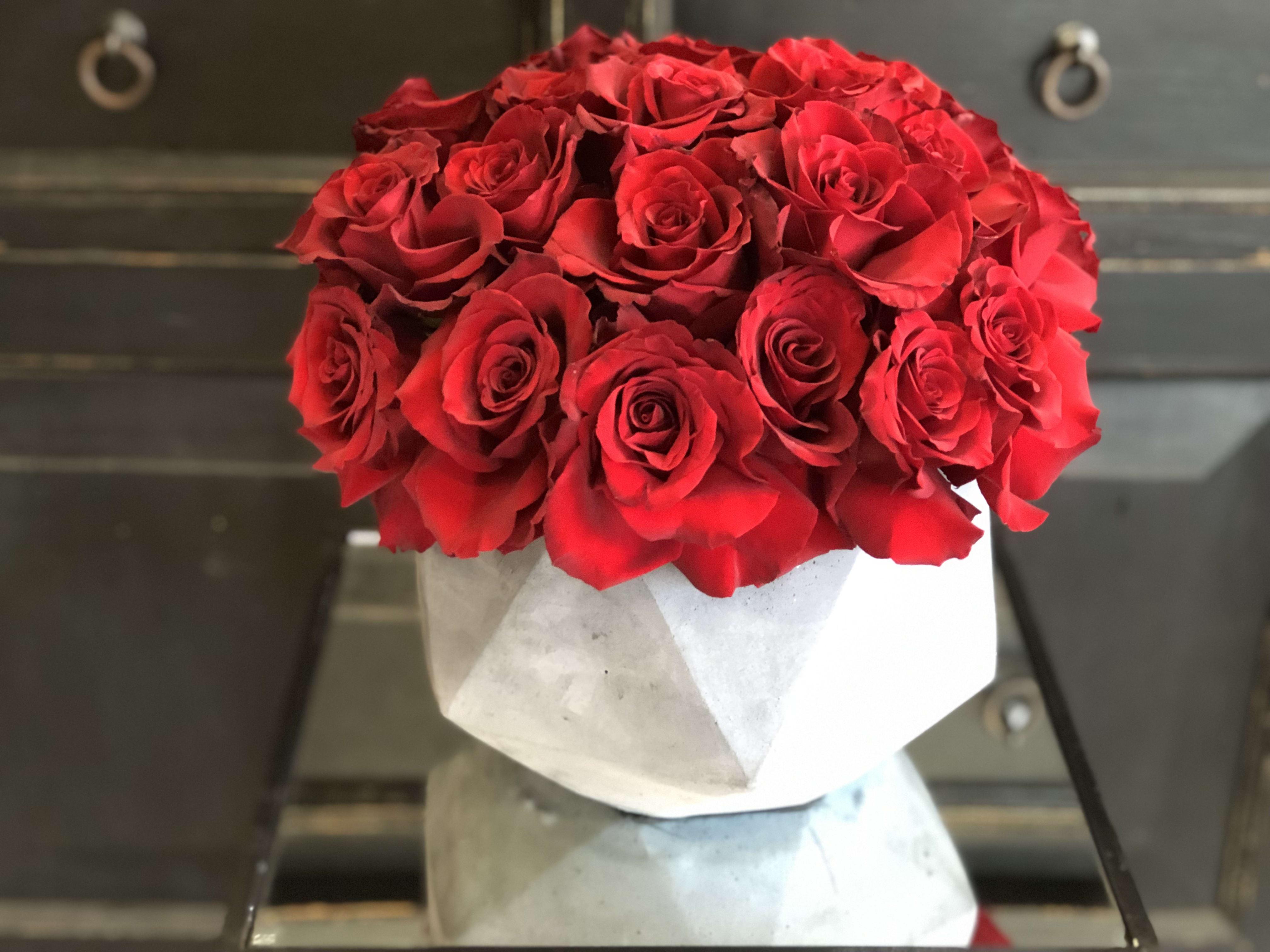 Bed Of Roses In La Crescenta Ca Crescenta Valley Flowers