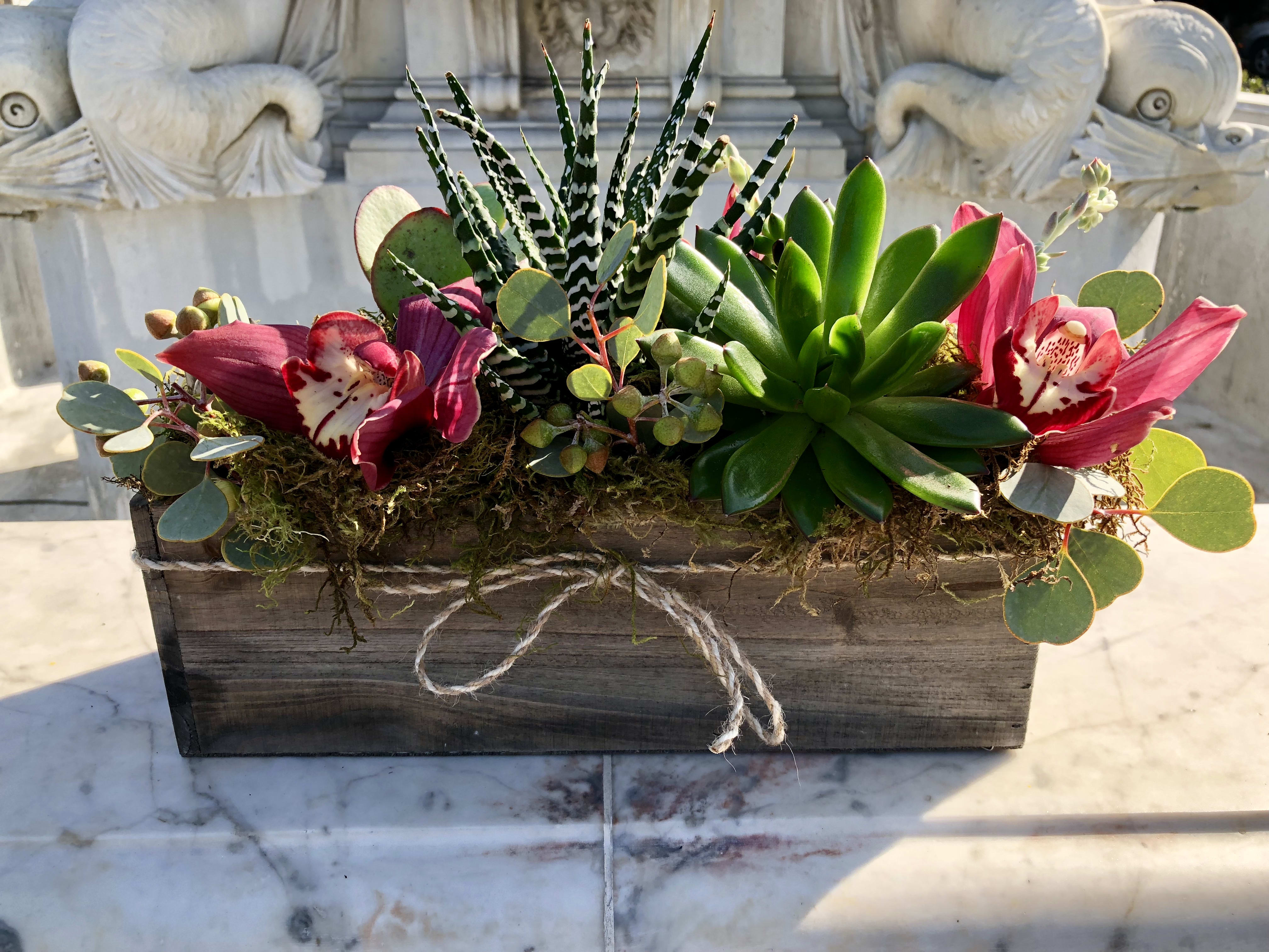 Succulent Box Substitutions May Be Necessary In Palos Verdes