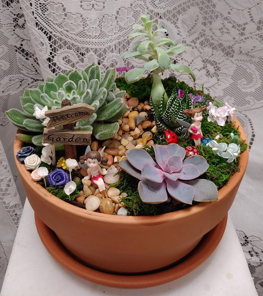Table Top Fairy Garden In Belfair Wa Maddy S Old Town Flowers