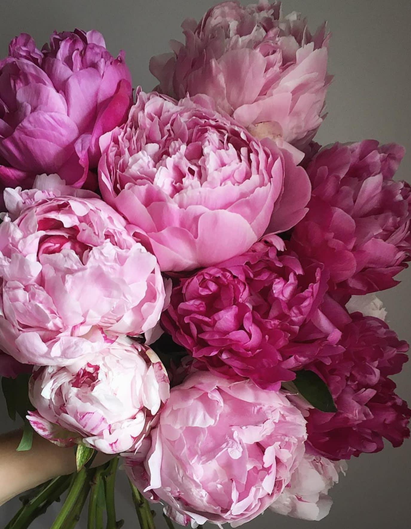 Bouquet Of Peonies In Cerritos Ca Cerritosflowers Com
