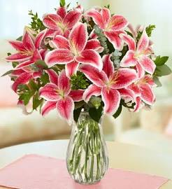 Stunning Pink Lily S In Long Beach Ny Long Beach Florist