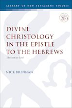 Divine Christology in the Epistle to the Hebrews cover