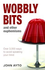 Wobbly Bits and Other Euphemisms cover