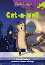 Cat-a-wall cover