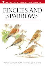 Finches and Sparrows cover