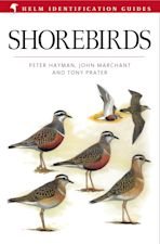 Shorebirds cover