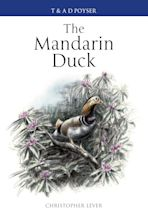 The Mandarin Duck cover