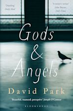 Gods and Angels cover