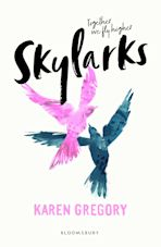 Skylarks cover