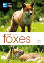 RSPB Spotlight: Foxes cover