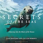 Secrets of the Seas cover