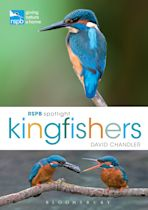 RSPB Spotlight Kingfishers cover