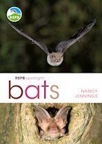 RSPB Spotlight Bats cover