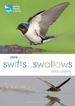 RSPB Spotlight Swifts and Swallows cover