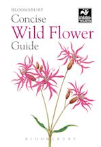 Concise Wild Flower Guide cover