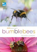 RSPB Spotlight Bumblebees cover