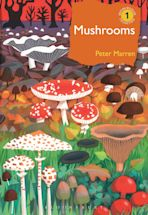 Mushrooms cover
