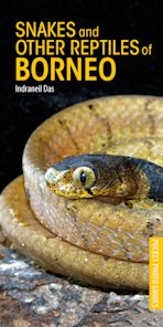 Snakes and Other Reptiles of Borneo cover