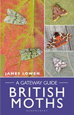 British Moths cover