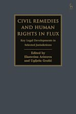 Civil Remedies and Human Rights in Flux cover