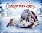A Guinea Pig Christmas Carol cover