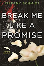 Break Me Like a Promise cover
