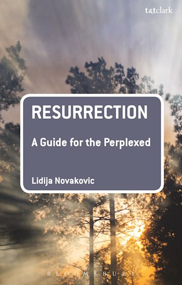 Resurrection: A Guide for the Perplexed cover
