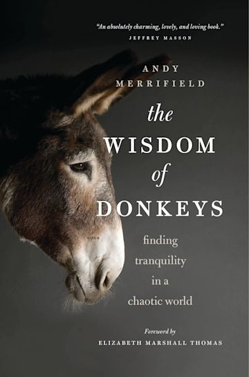 The Wisdom of Donkeys cover