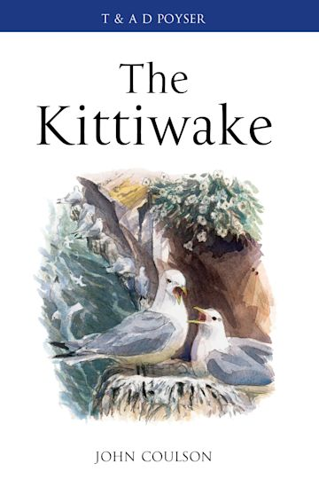 The Kittiwake cover