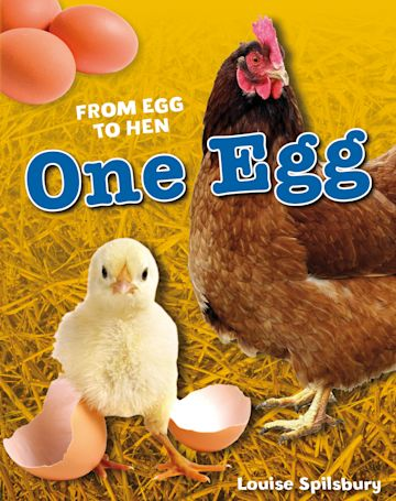 One Egg cover
