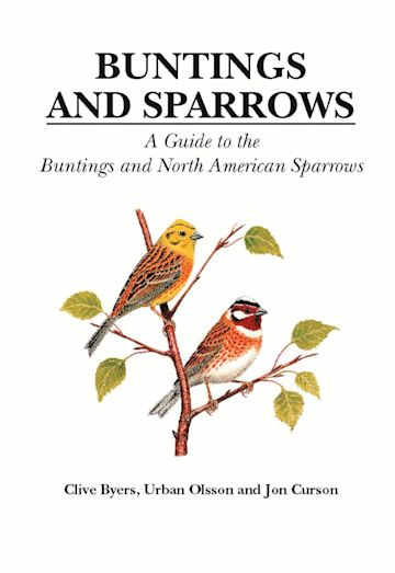 Buntings and Sparrows cover